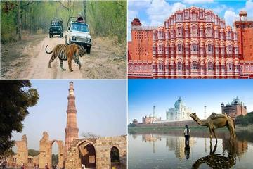 7 DAY PRIVATE GOLDEN TRIANGLE TOUR WITH RANTHAMBHORE WILDLIFE SAFARI