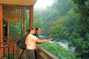 A Unique Rainforest Escape - 3 Nights At Vythiri Resort From Cochin With Private Transfers