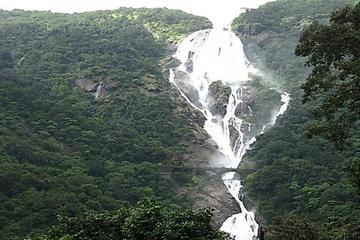 Private Adventures in the Jungle near Goa