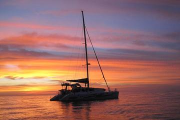 Sunset 3-Hour Cruise from Darwin Includes Dinner and Champagne