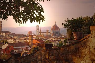 Tagesausflug nach Florenz von Rom aus...