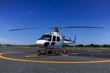 Private Tokyo Helicopter Tour