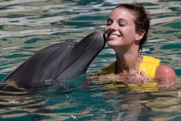 Baño con delfines en Cancún