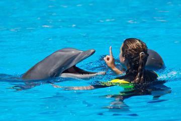 Entrenador de delfines por un día en Cancún