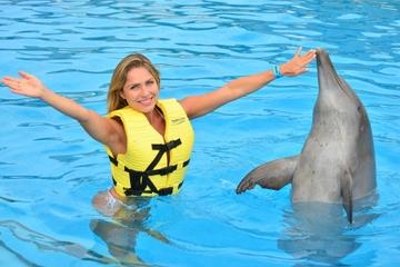 Programa de triple aventura con delfines en la Riviera Maya