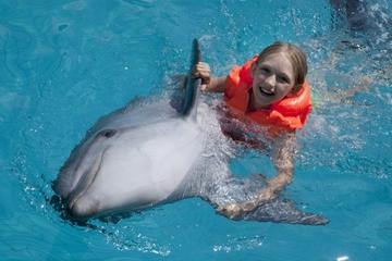 Programme zum Schwimmen mit und Reiten auf Delphinen in Cancun
