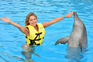 Riviera Maya Triple Adventure Dolphin Program