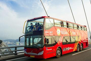 Jumbo City Tour Bus