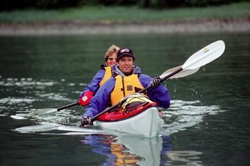 Aventura en kayak por la fauna y...