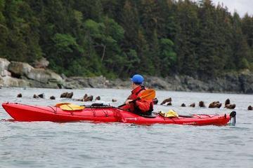 Excursão terrestre em Juneau: Aventura de Caiaque pela Vida Selvagem...