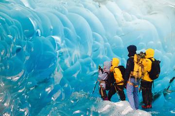 Mendenhall Glacier Canoe Paddle and...