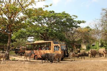 Full-Day Bali Safari and Marine Park...