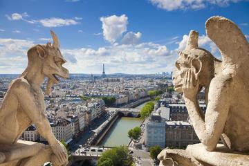 Excursión por lo mejor de París incluido Versalles y almuerzo en la...