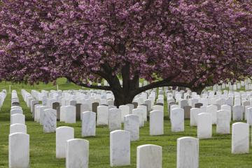 Excursão em ônibus panorâmico ao Arlington National Cemetery