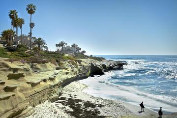 Excursion à La Jolla et plages de San Diego
