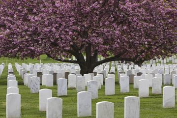 Hoppa på-hoppa av-rundtur till Arlington National Cemetery