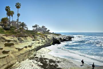 La Jolla & San Diego Beaches Tour