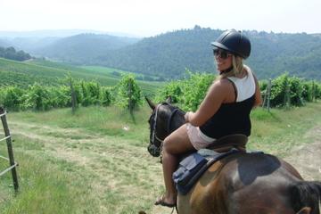 フィレンツェ発キャンティ地方での乗馬体験日帰り旅行