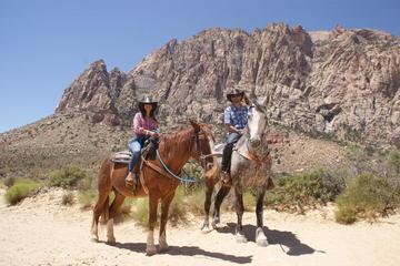 El Lejano Oeste: Paseo matinal a caballo con desayuno incluido
