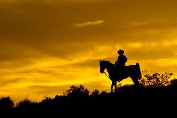 Promenade à cheval au coucher du soleil dans l'Ouest sauvage et dîner