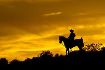 Wild West Sunset Horseback Ride with Dinner