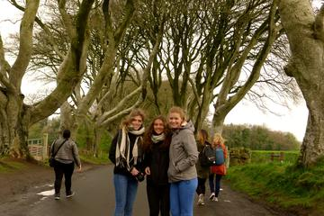 Full Day Giants Causeway Tour From Belfast