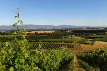 Full-Day Martinborough Guided...