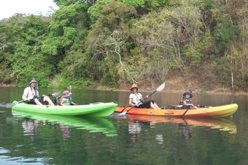 River kayak wildlife and mangrove observation