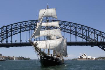Cruceros en gran velero el día de...