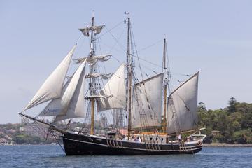 Entdeckungs-Bootstour mit Großsegler am Nachmittag im Hafen von Sydney