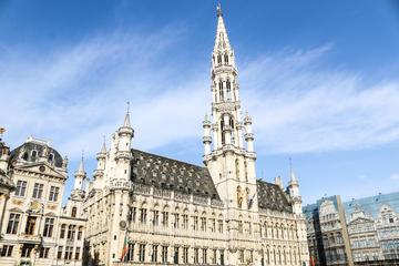 Promenade pédestre d'une demi-journée dans Bruxelles à la découverte...