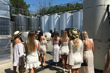Tamborine Mountain Half-Day Private Wine Tour from Gold Coast