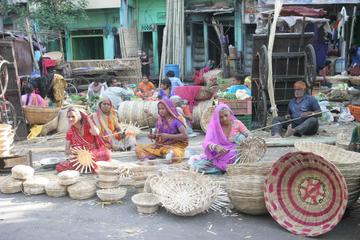 Ancient Arts Walking Day Tour in Udaipur