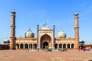 Halbtägige Tour durch Alt-Delhi in...
