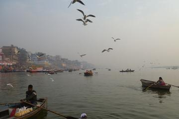 Small-Group Morning Varanasi Tour...