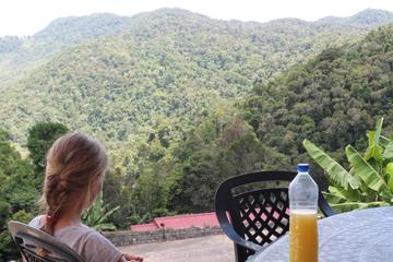Madagascar's National Route 7 Great Rainforest Road Express to Ramanofana Park and Anja Reserve