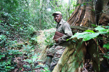 Walking and Trekking Trip on Mount Mbaminkon