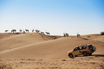 Seaplane Tour to Dubai from Abu Dhabi and Al Maha Wildlife Drive