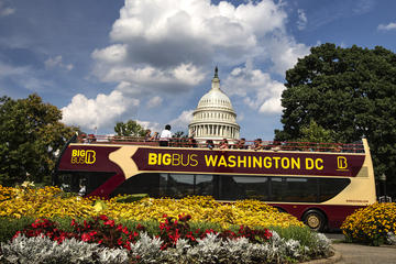 Big Bus Washington hoppa på-hoppa ...