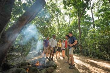 Excursão cultural aborígene pela floresta tropical de Daintree saindo...