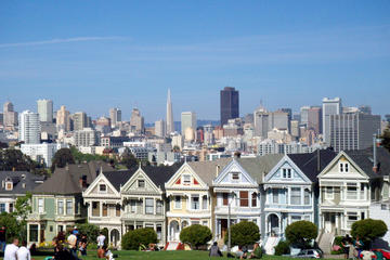 Custom Private San Francisco and or Muir Woods Tour
