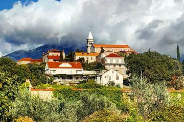 Peljesac Wine Tasting Private Tour from Dubrovnik