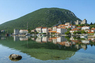 Ston Oyster Tasting Tour from