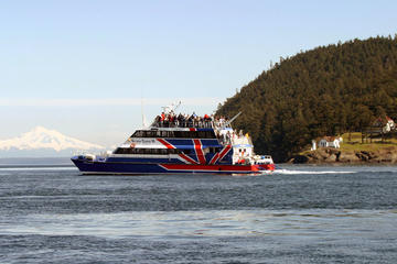 Friday Harbor Day Trip & Whale Watching from Seattle