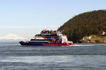 Friday Harbour-Tagesausflug und Bootstour zur Walbeobachtung von...