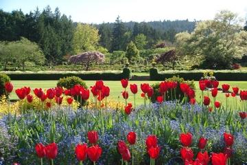 Victoria-Tagesausflug von Seattle mit den Butchart Gardens