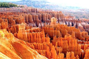Tur i mindre gruppe til nationalparkerne Bryce Canyon og Zion fra fra...