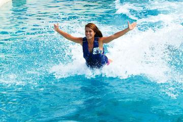 オアフのシー ライフ パークでイルカと泳ぐツア…
