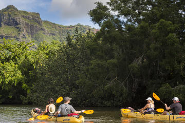 Wailua River Kayak and Hike Adventure