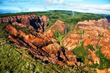 オアフ島発カウアイ島行き日帰り旅行:ワイメア渓谷とシダの洞窟